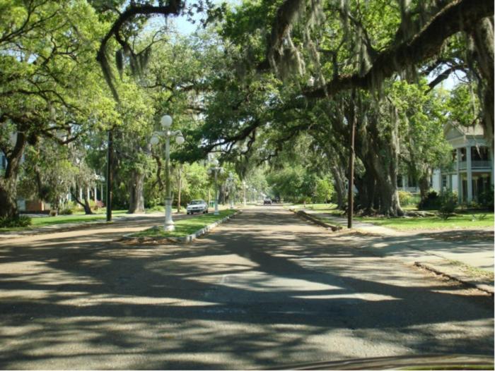 4. Bayou Teche Scenic Byway