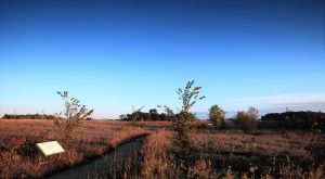 This Historic Battlefield In Minnesota Is Hauntingly Beautiful
