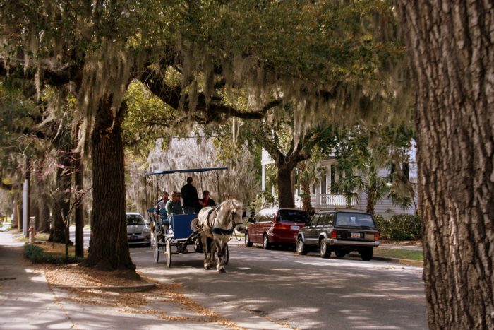 7. Take a carriage ride through historic Beaufort.