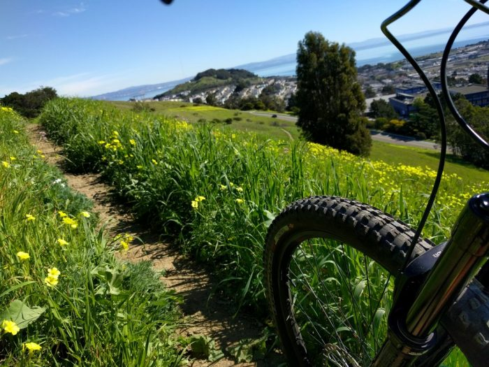 4. There are also open tracks for mountain biking — and there's rarely anyone around to get in your way.
