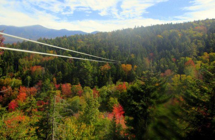 bretton-woods-canopy-1