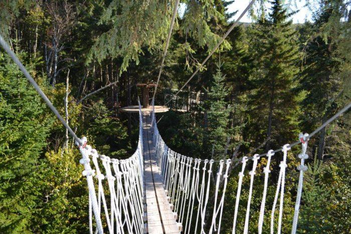 bretton-woods-canopy-3