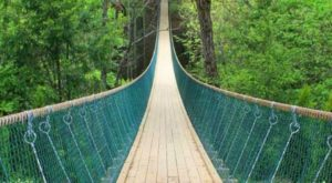 These 15 Terrifying Swinging Bridges Around The U.S. Will Make Your Stomach Drop