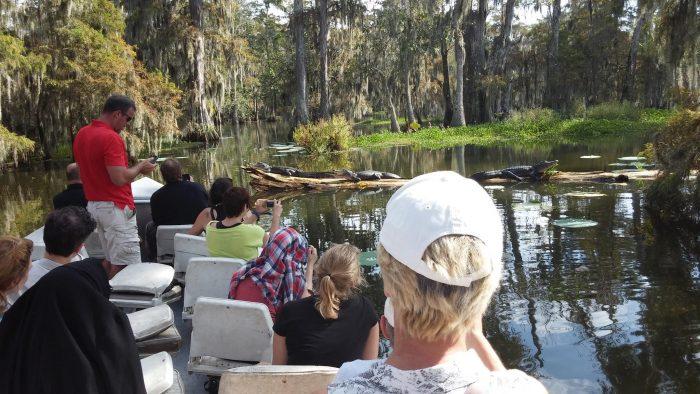3) Cajun Country Swamp Tours, Breaux Bridge