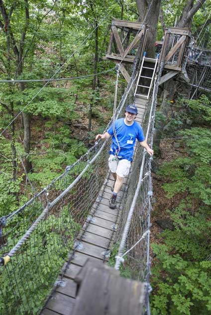 Stroll through the treetops on the beautiful EcoTarium canopy walk.