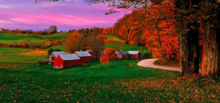 These 16 Charming Farms Across The U.S. Will Make You Love The Country