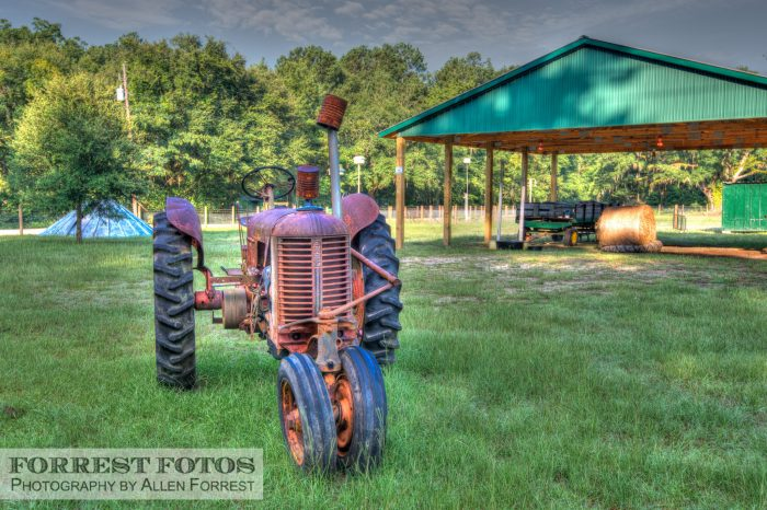 8. And farm equipment is romanticized in the light and texture of the South Carolina sun.