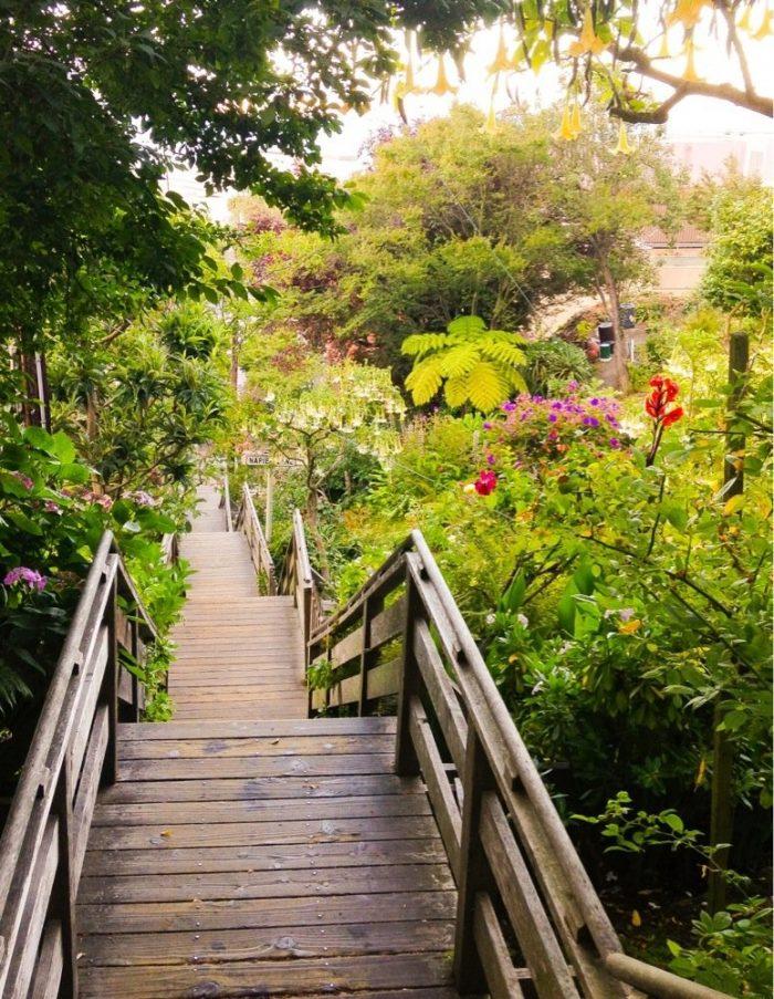 5. Filbert Steps