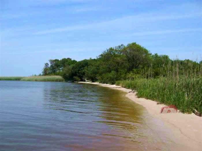 4. Long Point Island