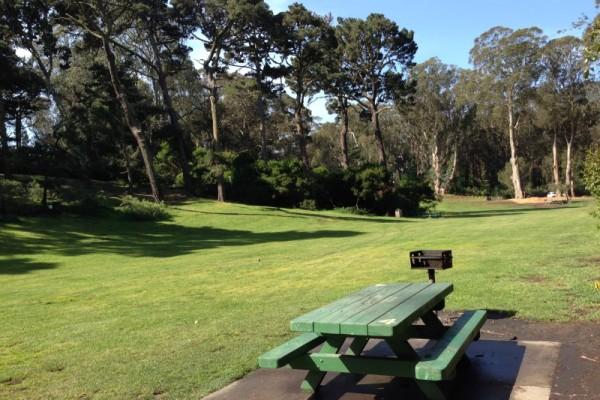 10. Golden Gate Park
