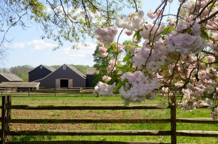 5. Historic Longstreet Farm, Holmdel