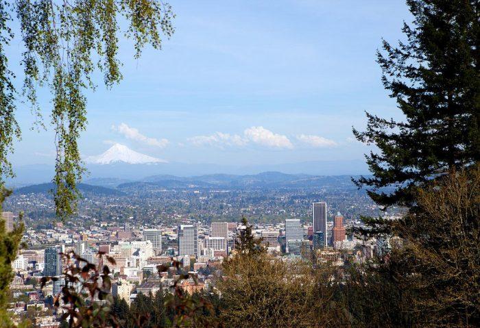 3. Portland's cityscape from a hidden nook in Washington Park.