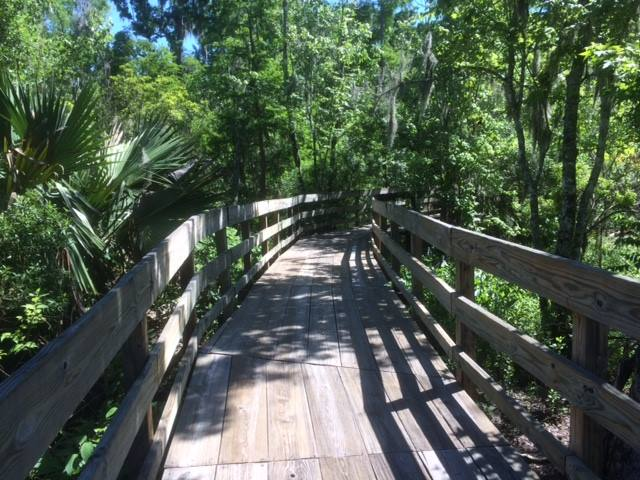 The .9 mile Palmetto trail is primarily boardwalks over marshes.
