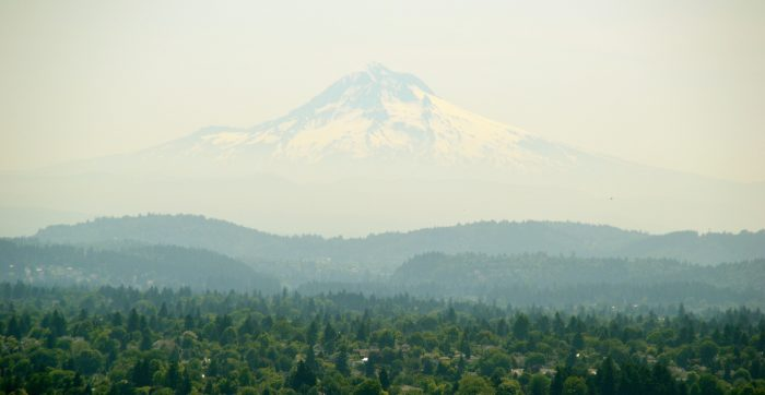 """1. If a photo could talk, this one would scream """"Portland."""""""