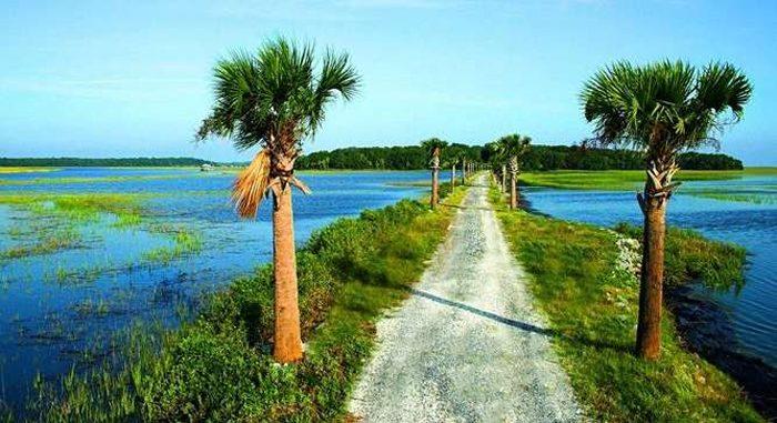 1. Live Oaks Island