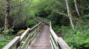 12 Boardwalks In Northern California That Will Make Your Summer Awesome