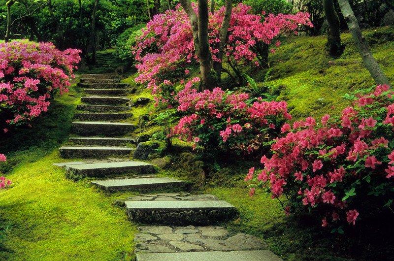 Japanese Garden Landscape Portland Oregon