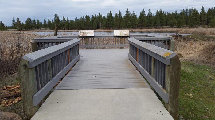 9. West Blackhorse Lake Boardwalk, Turnbull National Wildlife Refuge (Cheney)