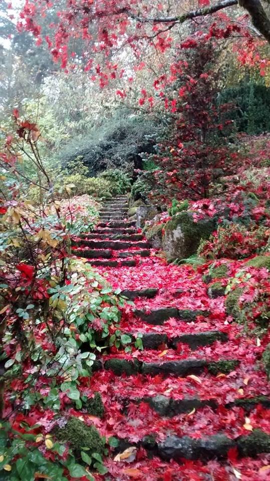Secret Garden: This Little Known Garden In Portland Is Amazing