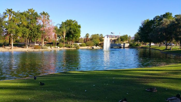 7. This beautiful patch of grass at Civic Center Park in Palm Desert is a great place for a romantic afternoon picnic.