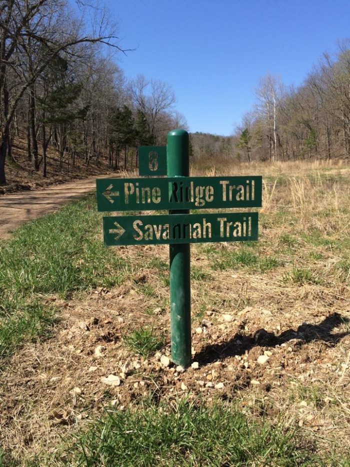 There are three self-guided nature trails that are open to visitors during operating hours.