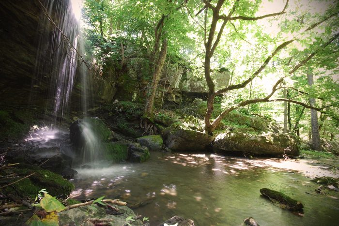 Can you believe this stunning waterfall is hiding in the preserve?