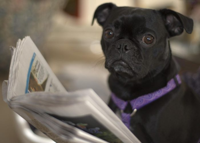 8. We read the local newspaper.