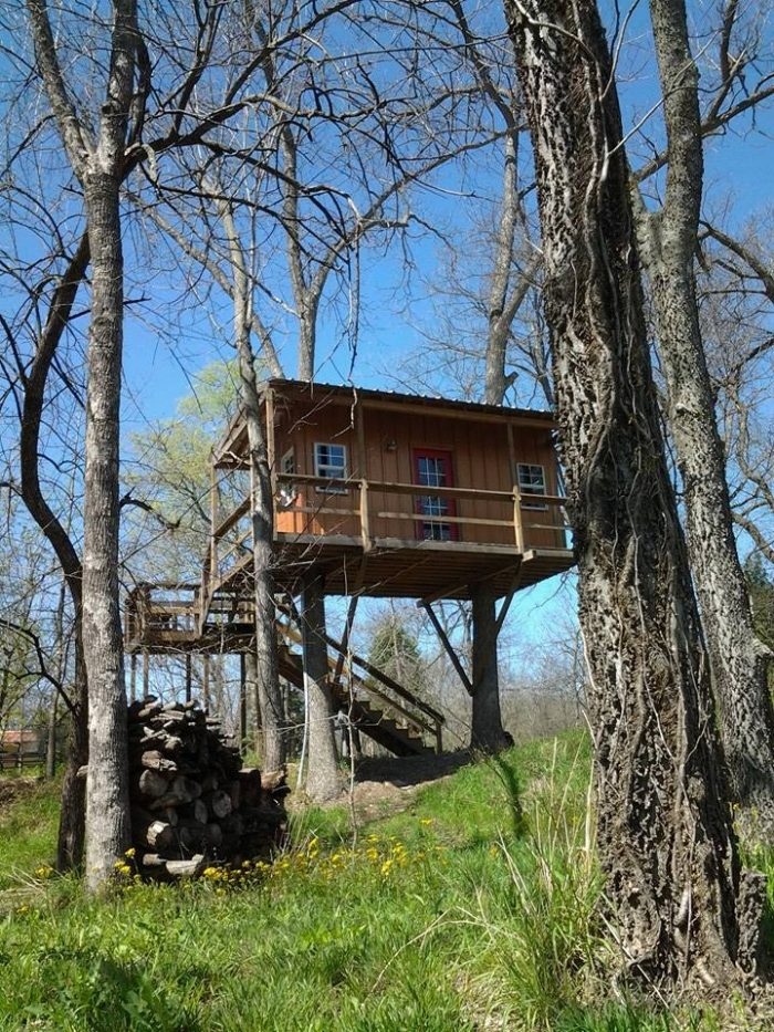 The Flying Penny Treehouse is set high above overlooking the 100 acres of peaceful wilderness.
