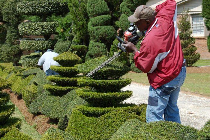 4. Pearl Fryar's Topiary - Bishopville, SC