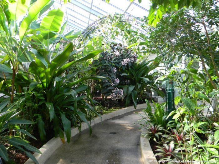 Tropical House...