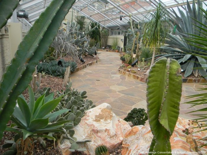 And Desert House. Have you ever seen so many varieties of cacti in one room?