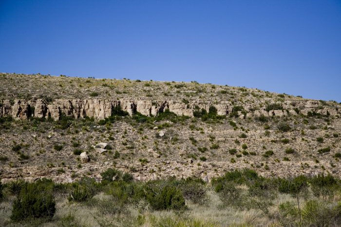 1. The land that forms Carlsbad Caverns was once part of an ancient underwater reef called Capitan Reef. Marine fossils have been found in the rock.