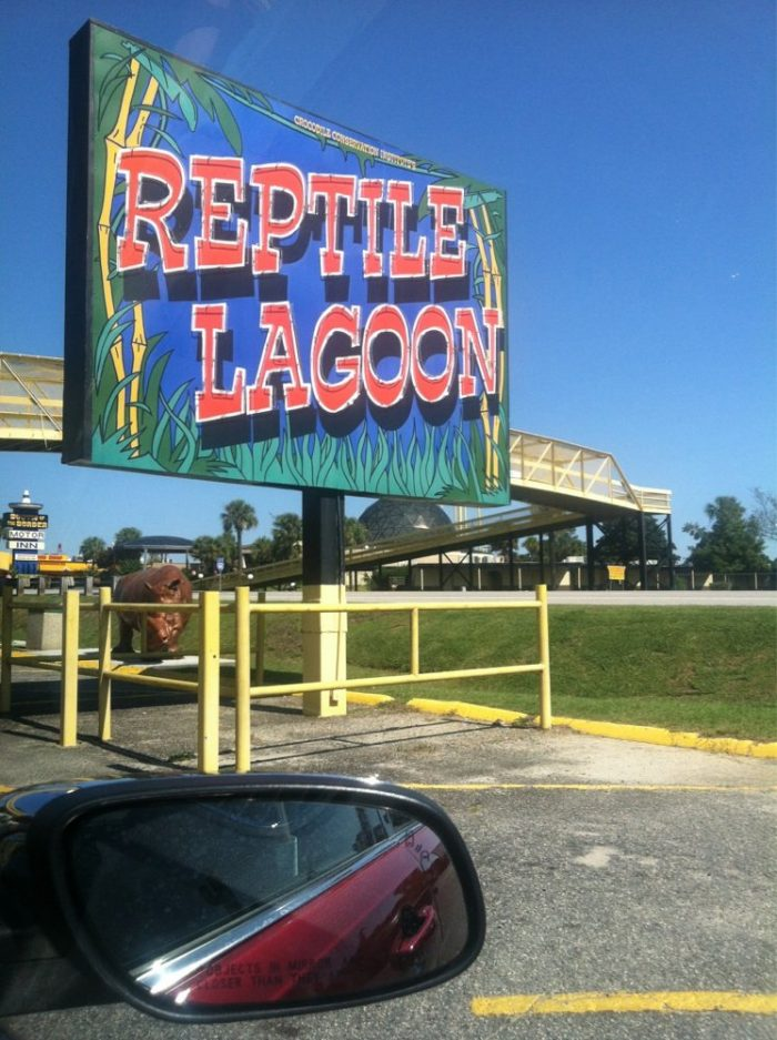 """15. """"Hmm...The Reptile Lagoon. Wait. Slow down. Does the sign say there are SNAKES??"""""""