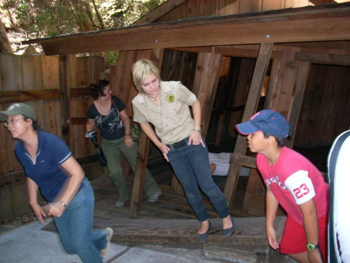 1. The Mystery Spot