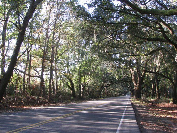 5. Take a scenic drive.