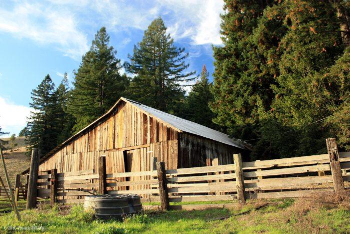 5. Sonoma County