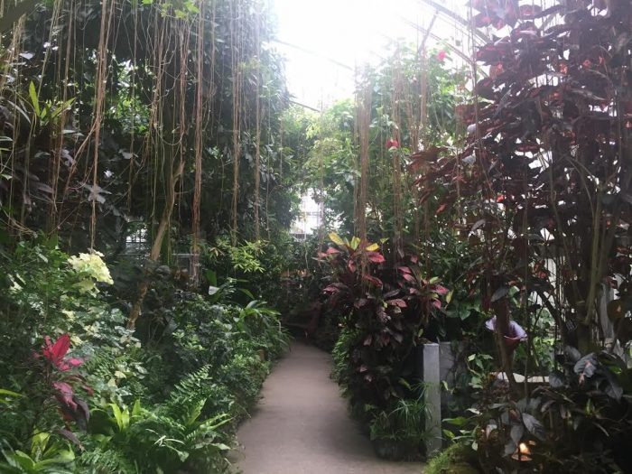 10. Also, check out one of our botanical gardens or conservatories this summer and get ready to be amazed.