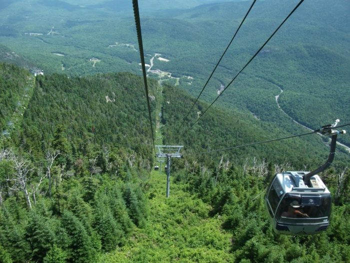 Over 8,000 feet long, the ride gives you unforgettable views of our tallest mountains, gorgeous forests, and so much more.