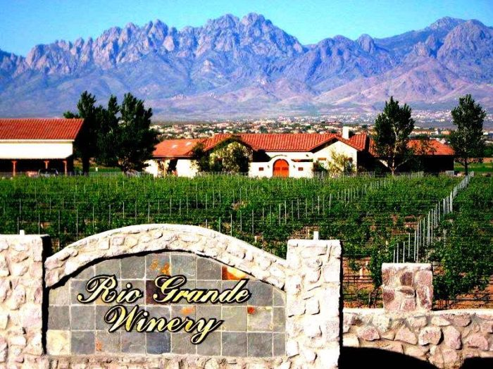 12. Sip some vino at one of New Mexico's scenic wineries.