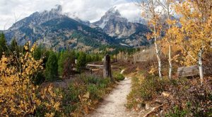 This One Easy Hike In Wyoming Will Lead You Someplace Unforgettable