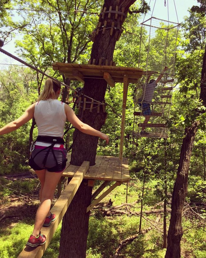 11. Explore the canopy.