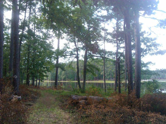10. Marathon Lake Recreation Area Trail, near Raleigh