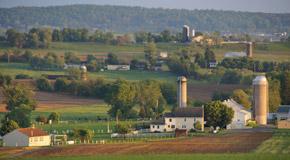 10. Experience authentic Amish life at Plain & Fancy Farm near Bird-in-Hand.