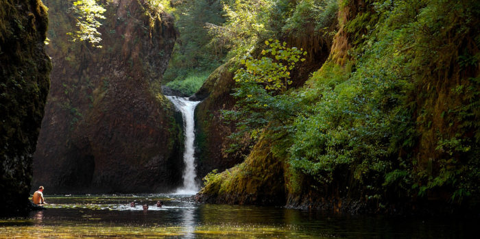 Punchbowl Falls is absolutely beautiful.