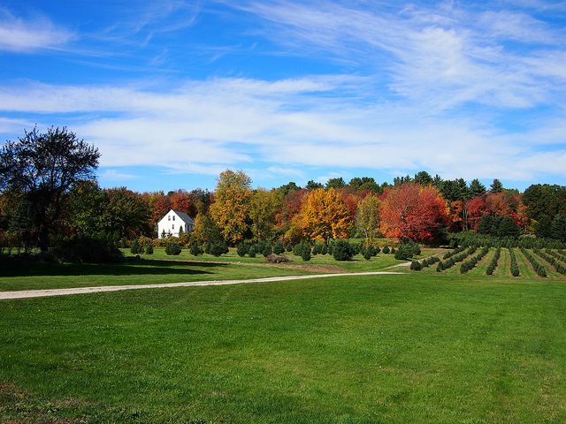 13. Autumn in the nation's smallest state looks like this.