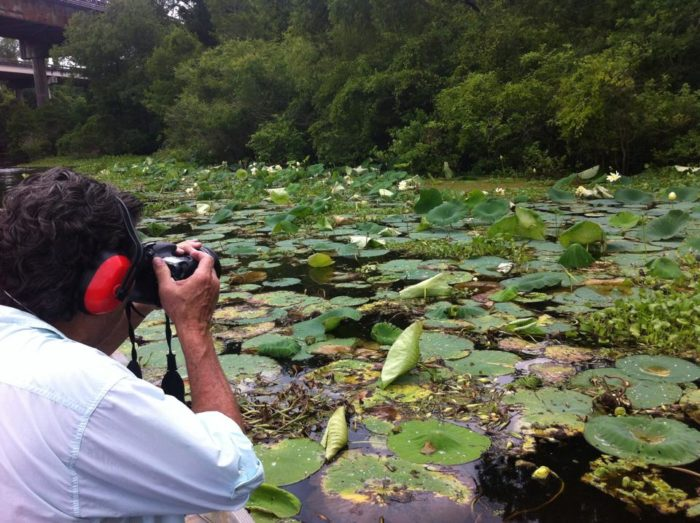 Lily pads bloom here in the summer, making for perfect photo ops.