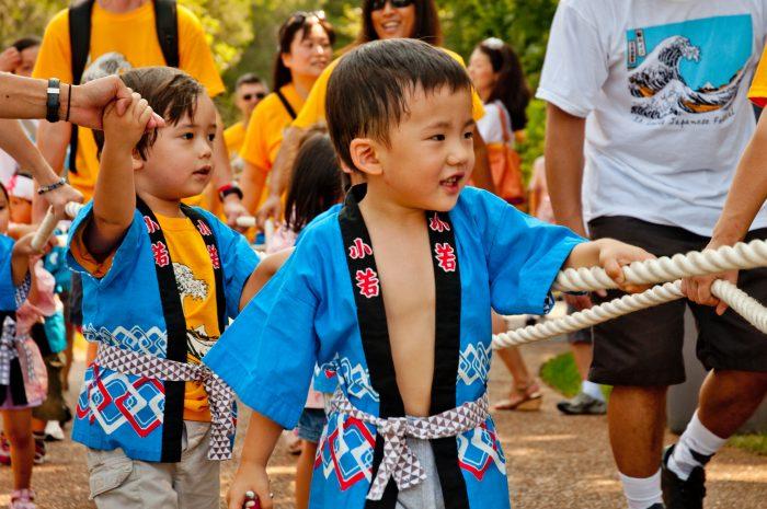 10. Missouri Botanical Garden Japanese Festival – St. Louis