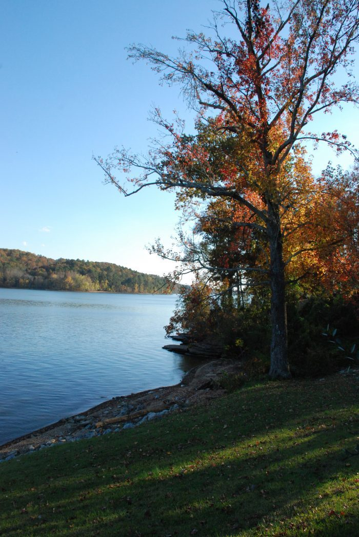 Filled with crappie, bream, catfish, sauger, walleye and most species of bass, Pickwick Lake is a prime fishing spot.