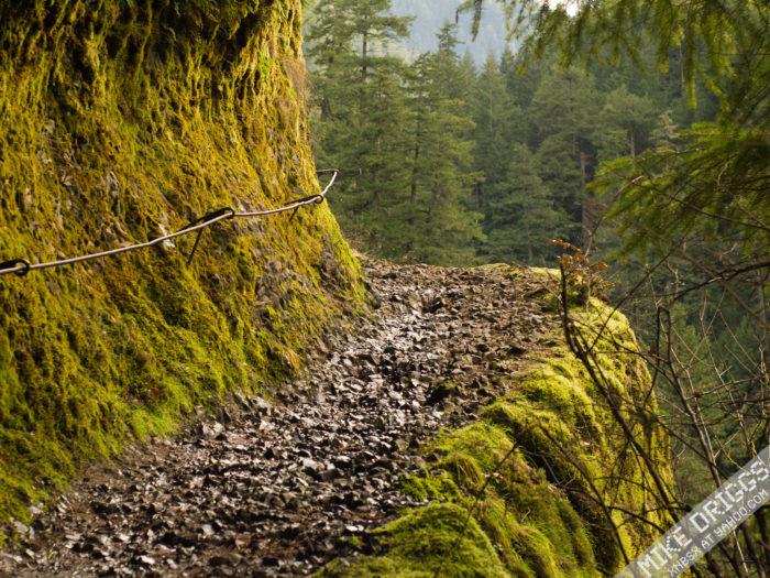 To get there, you'll hike along the amazing Eagle Creek Trail for 3.4 miles (round trip).