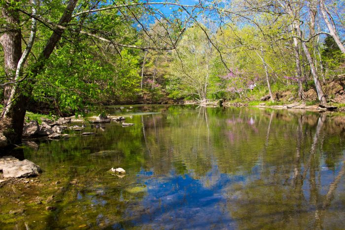 Hiking St Louis A Guide to 30 Wooded Hiking and Walking Trails in the St Louis Area